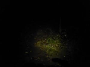 Klimmen in het donker, nieuwe ervaring.